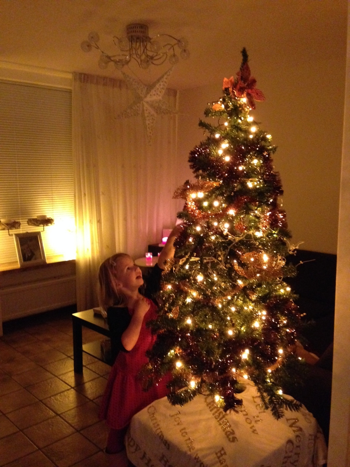 LIDL kerstboom